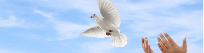 Dove Release at Storke Funeral Home